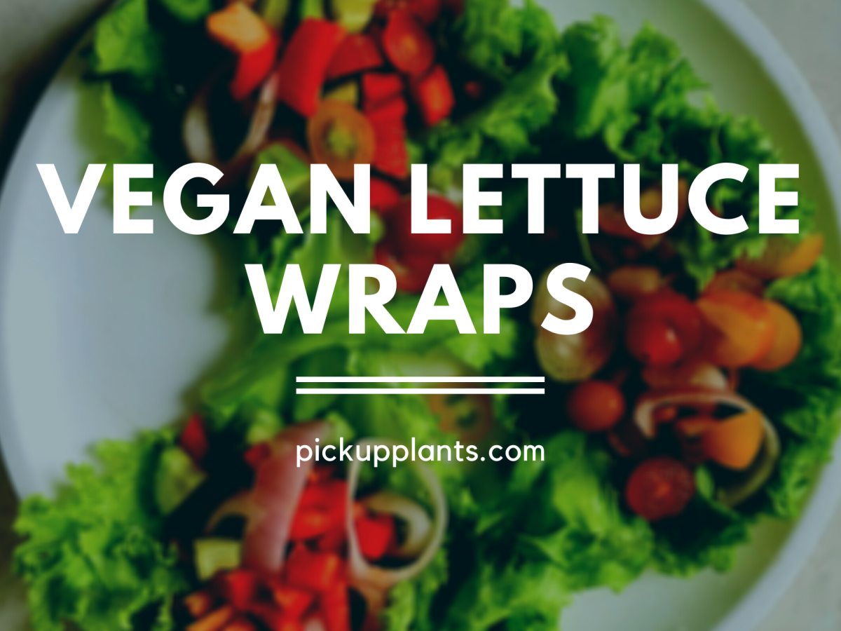 vegan lettuce wraps recipe